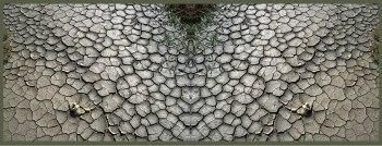 Art Naturae 19 - Juan M. Beardo