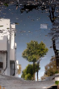 reflejo lluvia primavera - R.Sánchez