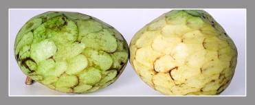 Fruta de Temporada. Paco Rocha
