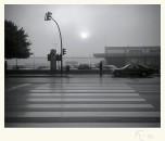 Niebla. Paco Rocha