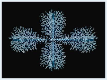 Luces de Navidad. Juan M. Beardo