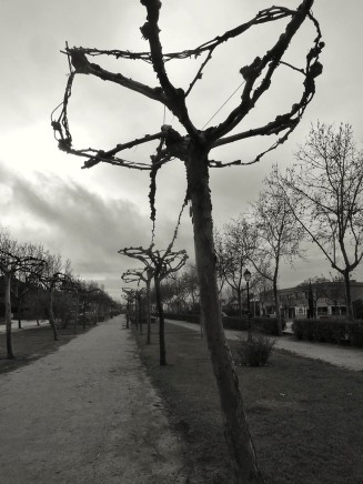 Paseo de invierno - R.Sánchez