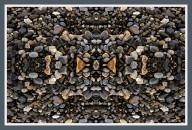 Art Naturae 13. Juan M. Beardo
