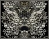Art Naturae 15. Juan M. Beardo
