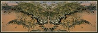 Art naturae 23 (1). Juan M. Beardo