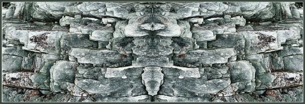Art Naturae 5. Juan M. Beardo