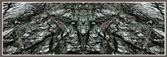Art Naturae 6. Juan M. Beardo