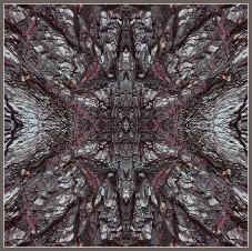 Art Naturae 8. Juan M. Beardo