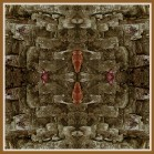 Art Naturae14. Juan M. Beardo