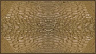 Art Naturae 20. Juan M. Beardo