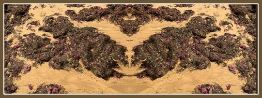 Art Naturae 23. Juan M. Beardo