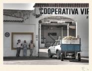 La Cooperativa. Paco Rocha