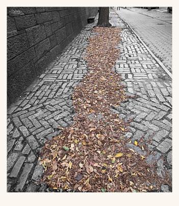 El rastro del otoño - Juan M. Beardo