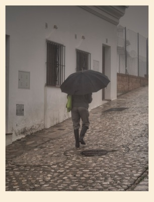 Llegaron las lluvias. Juan M. Beardo