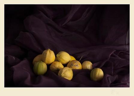 Bodegón con limones. Paco Rocha