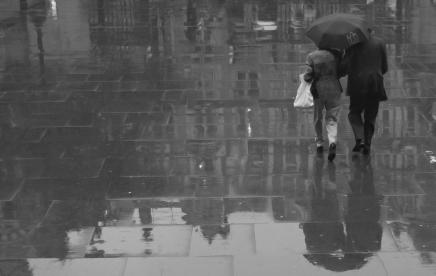 Llueve. Rafael Sánchez