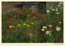 Primavera. Juan M. Beardo