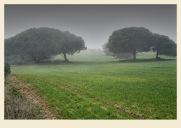 El día de la niebla 2-Juan M. Beardo