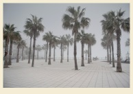 El día de la niebla 3-Juan M. Beardo