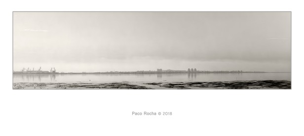 Puerto Real. Paco Rocha