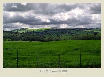 S/T - Juan M. Beardo